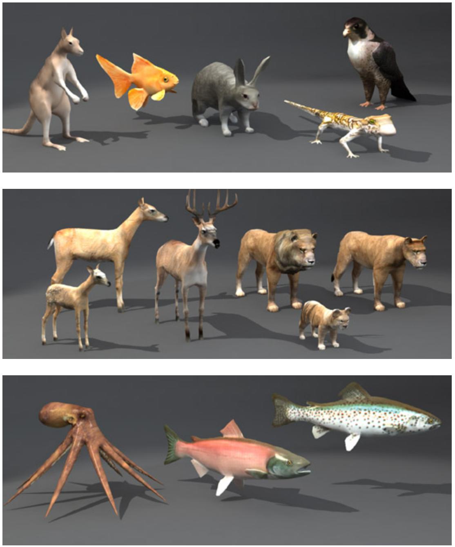 dosch 3d lo-poly animals