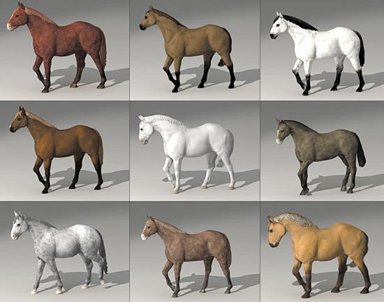 dosch 3d horses