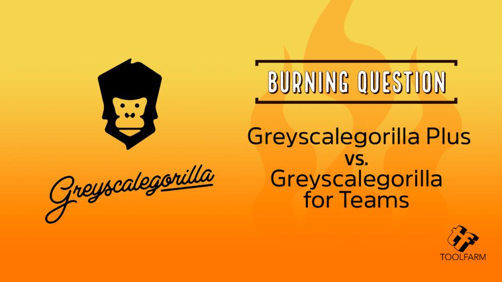 Greyscalegorilla Plus vs. Greyscalegorilla for Teams