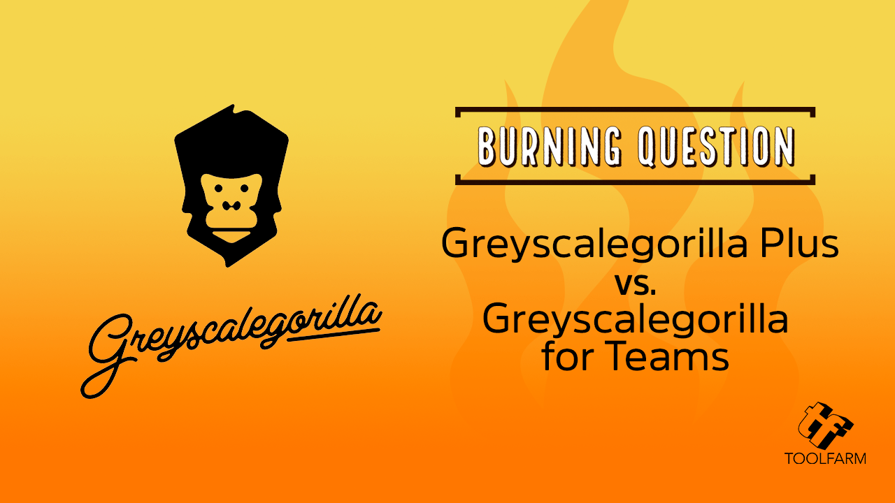 Greyscalegorilla Plus vs. Greyscalegorilla for Teams