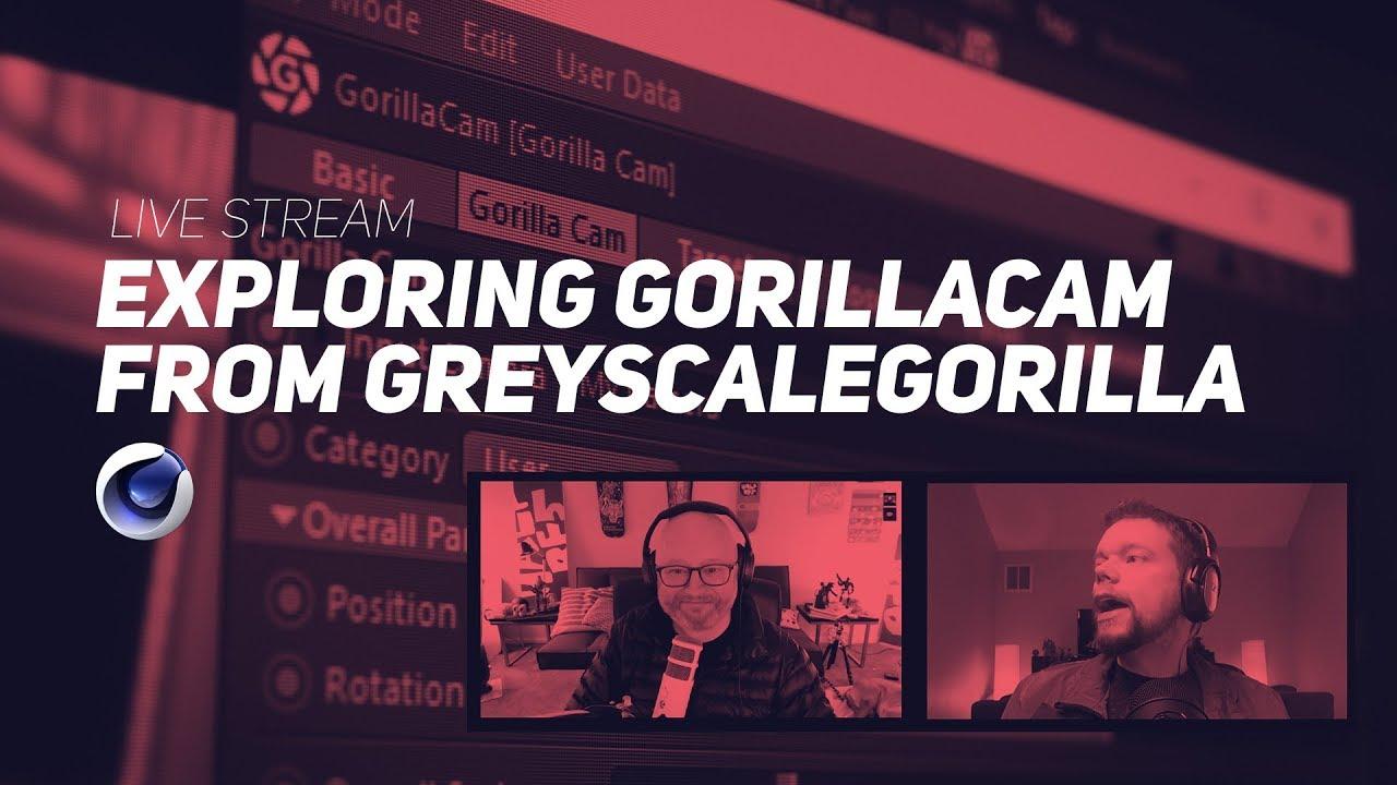 Exploring Gorillacam with Greyscalegorilla
