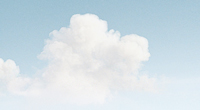 vray 3ds max cloud render check