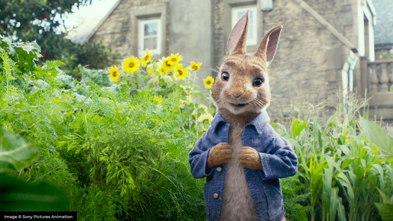 peter rabbit sony pictures animation