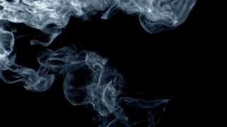 phoenix particles
