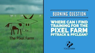 Burning Question: The Pixel Farm PFTrack and PFClean Training