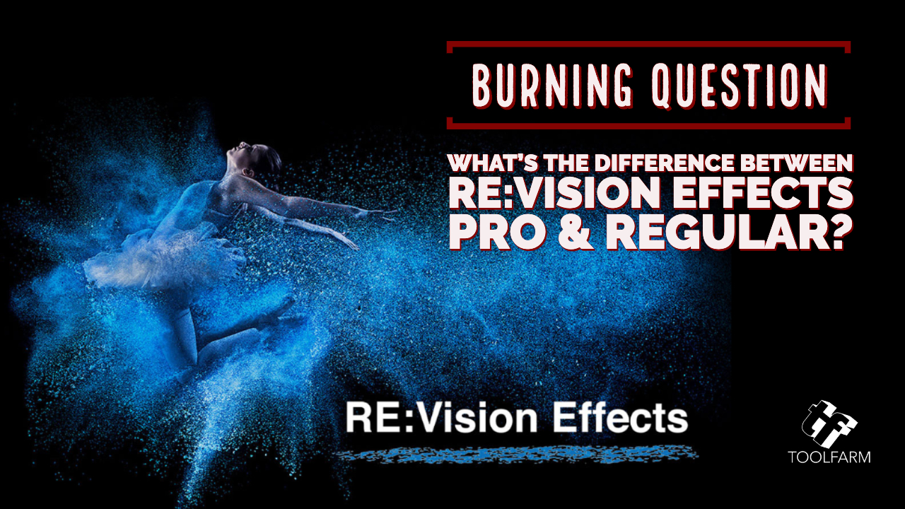 Burning Question What's the difference between RE:Vision Effects Pro & Regular?