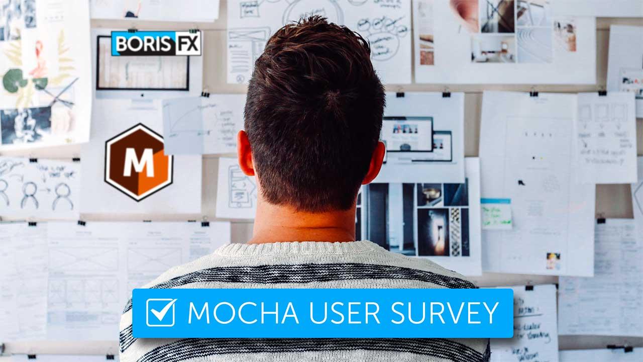 Mocha User Survey