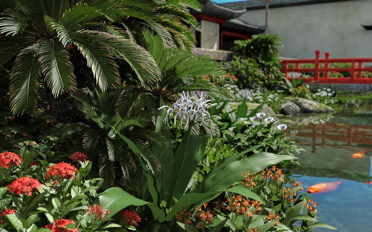 e-on plantcatalog beauty