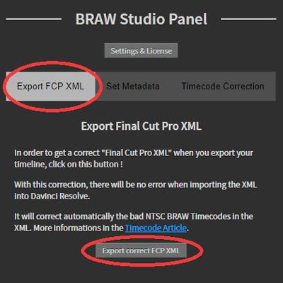 braw export panel
