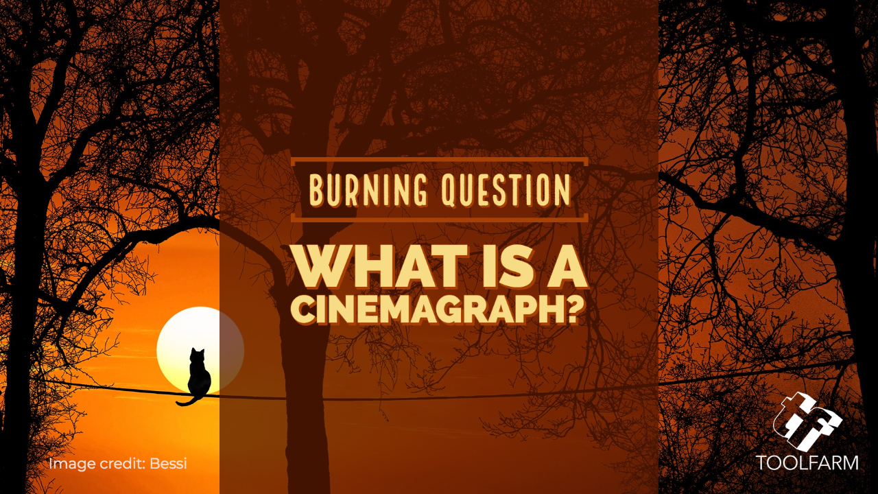 Burning Question: What is a Cinemagraph and How Do I Create One? Image credit: Bessi
