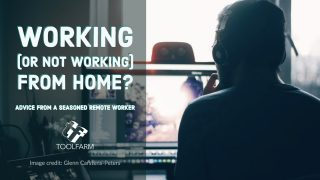 Working (or Not Working) from Home? Advice from a Seasoned Remote Worker