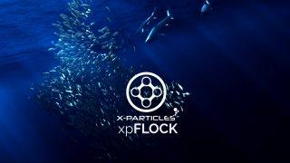 x-particles beta flock