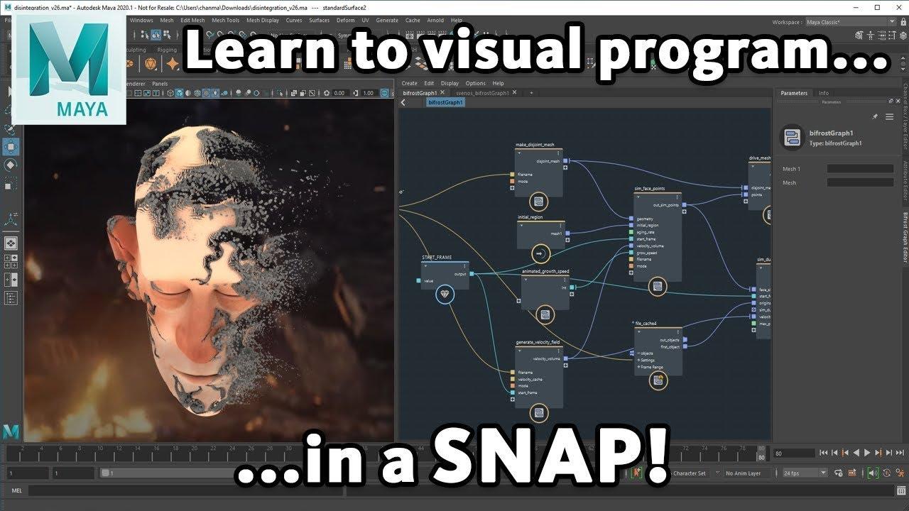 maya bifrost visual programing